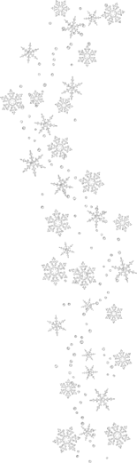 Transparent_Snowflakes_Clipart-325266-edited.png